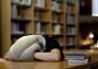 Подушка на голову с отверстиями для рук 45 * 35 см